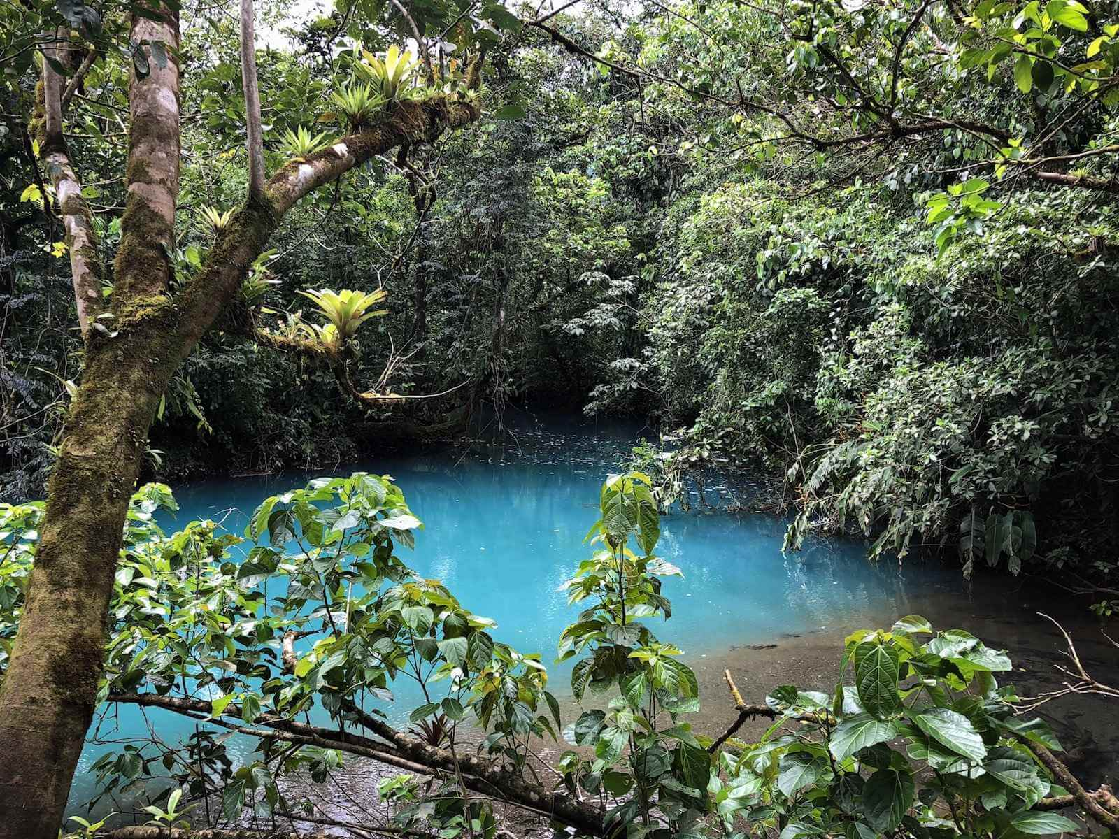 Laguna Azul: bezienswaardigheid Tenorio Volcano National Park