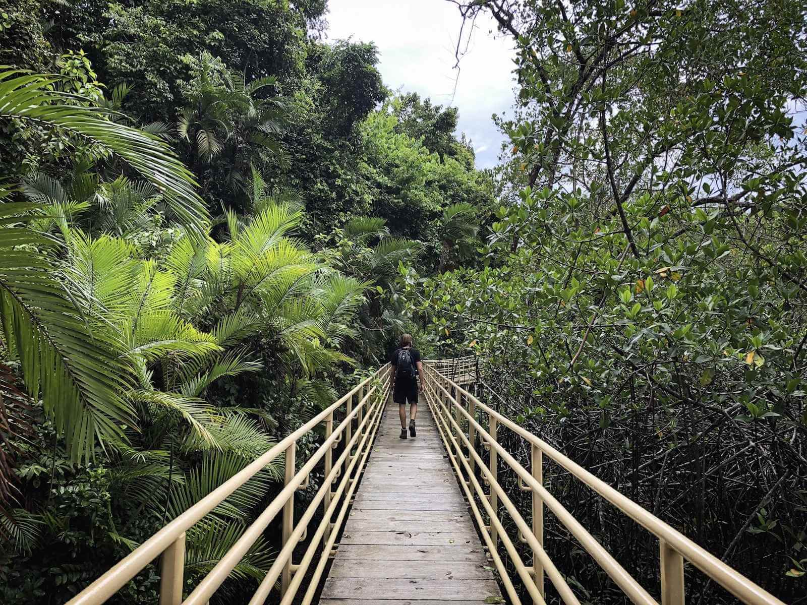 Wandelen in Manuel Antonio National Park