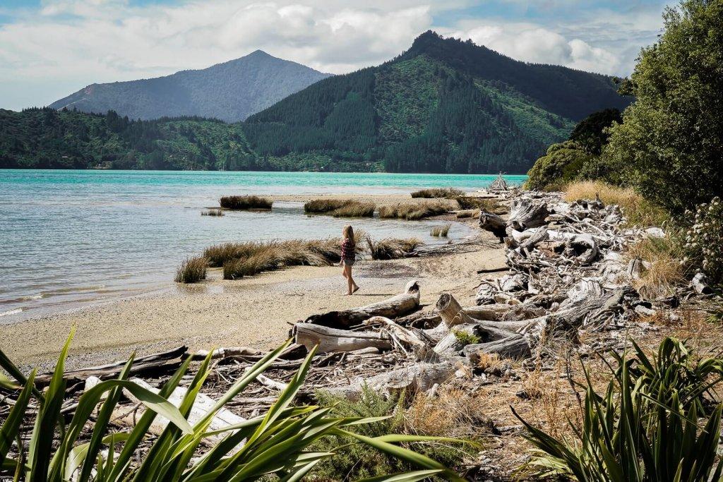 Marlborough Sounds Zuidereiland Nieuw Zeeland