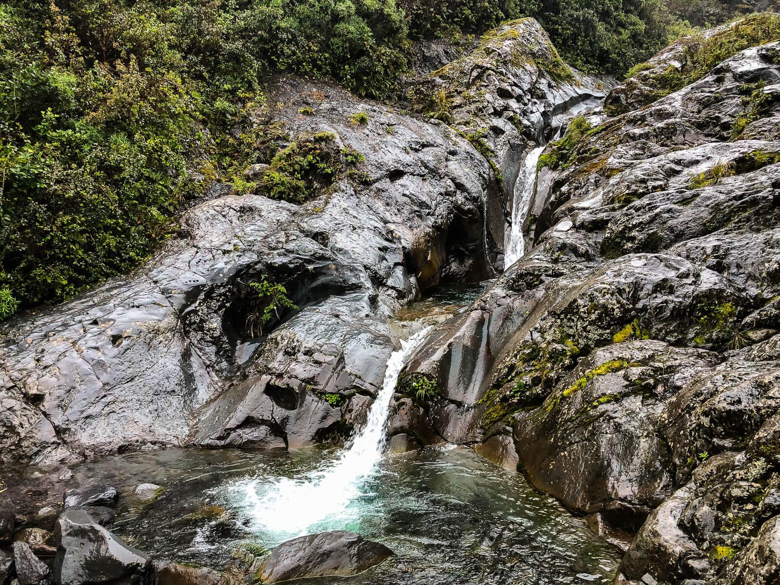 Hikes noordereiland Nieuw-Zeeland - Wilkies Pool track
