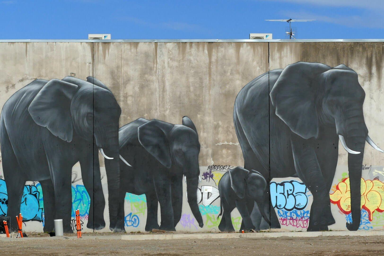 Christchurch Streetart