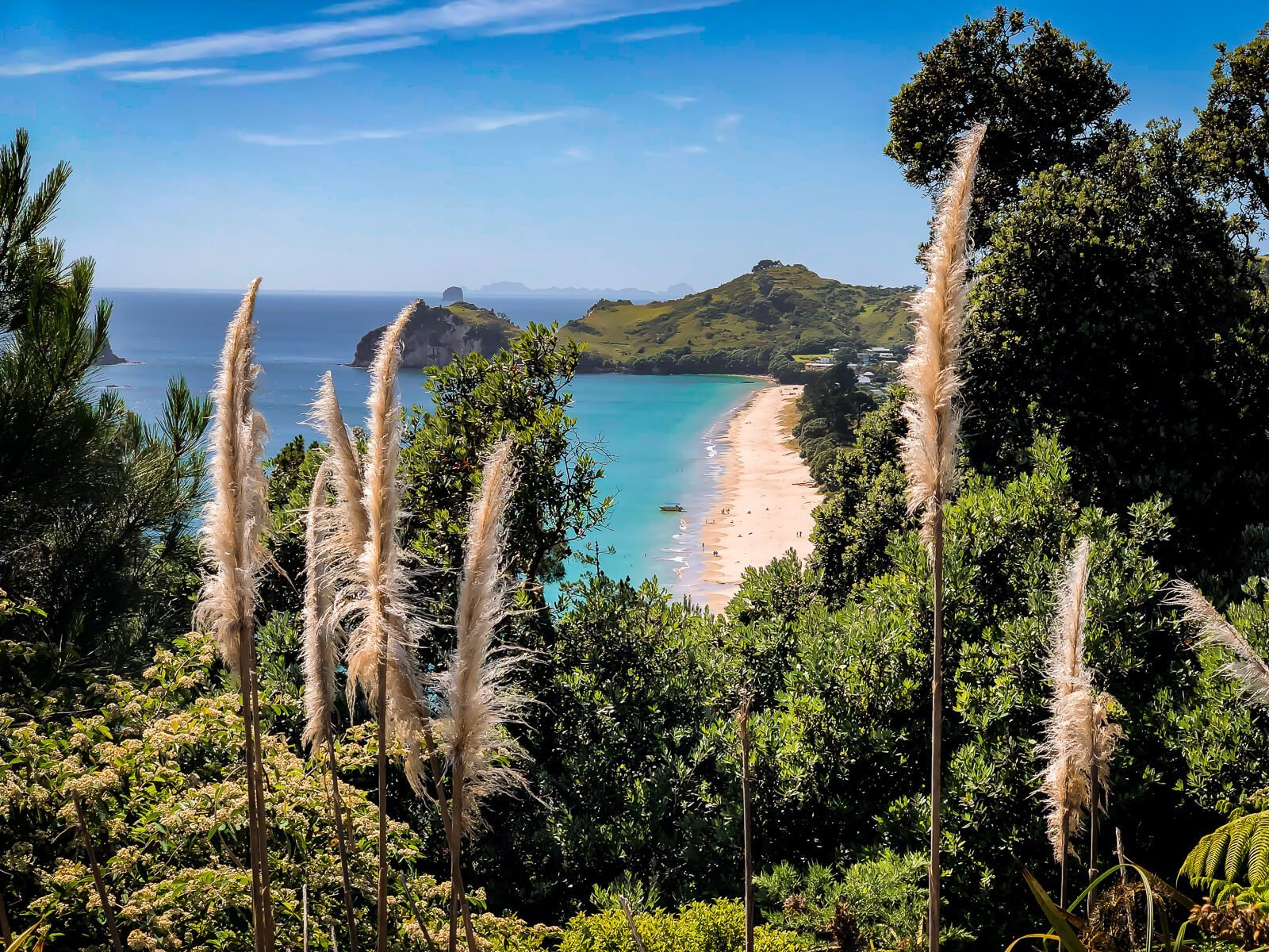 Hahei Beach - start van de hike naar Cathedral Cove