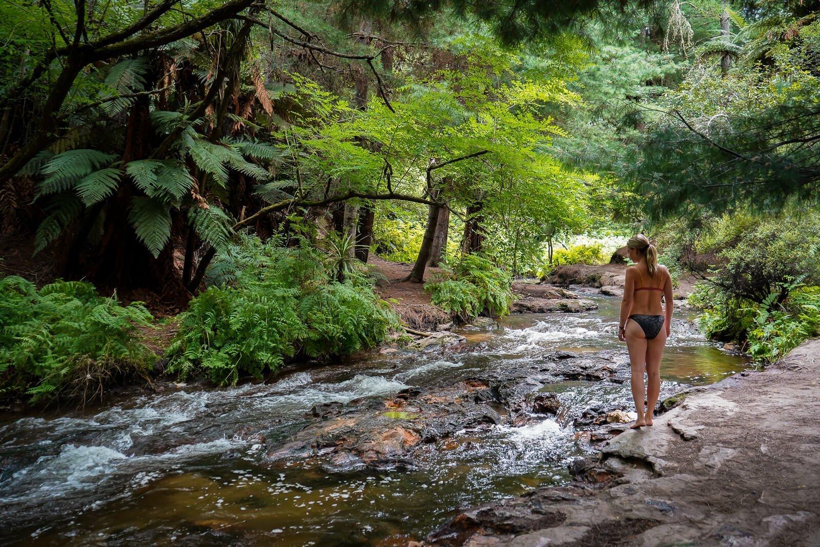 Keroscene Creek - Bezienswaardigheid Noordereiland Nieuw-Zeeland