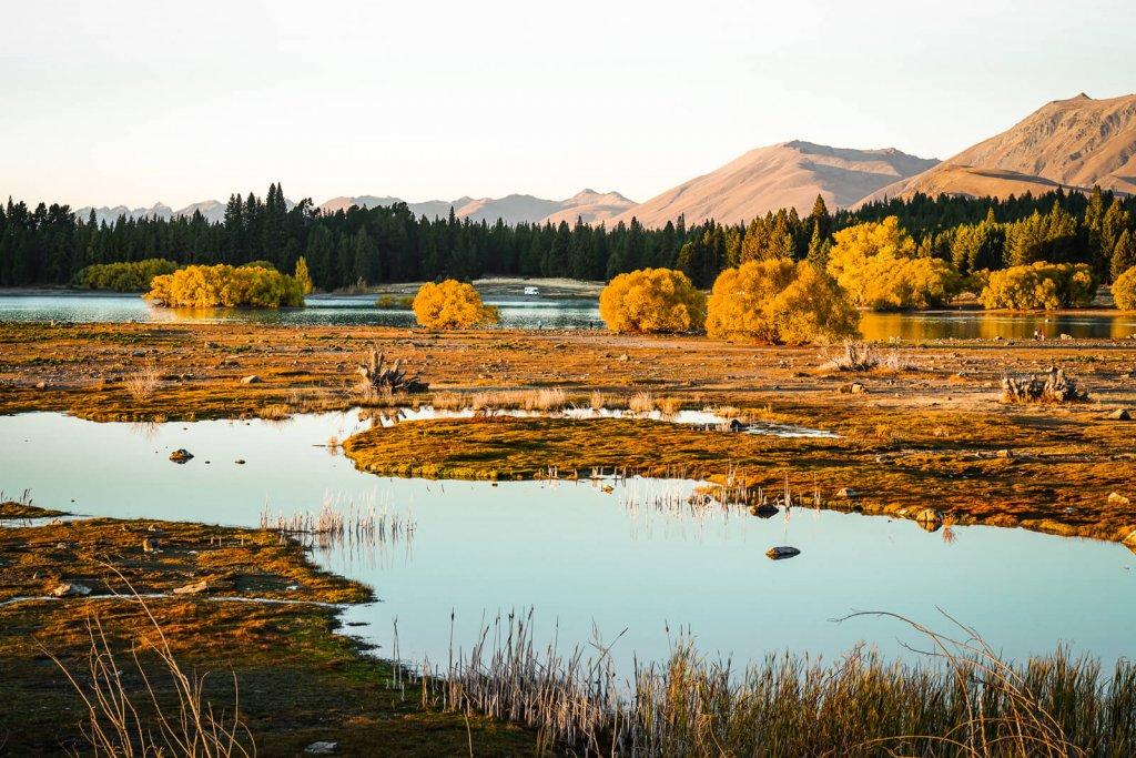 Lake Tekapo: hoogtepunt zuidereiland Nieuw-Zeeland