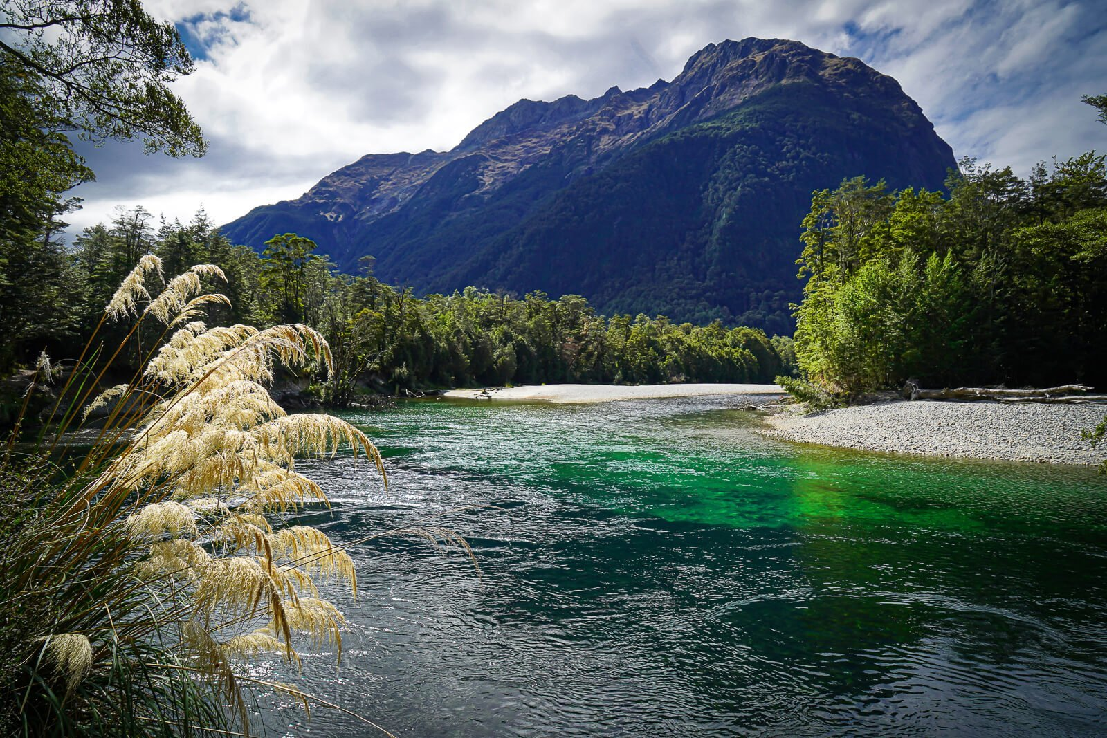 Clinton Rivier Milford Track - by NOMADS