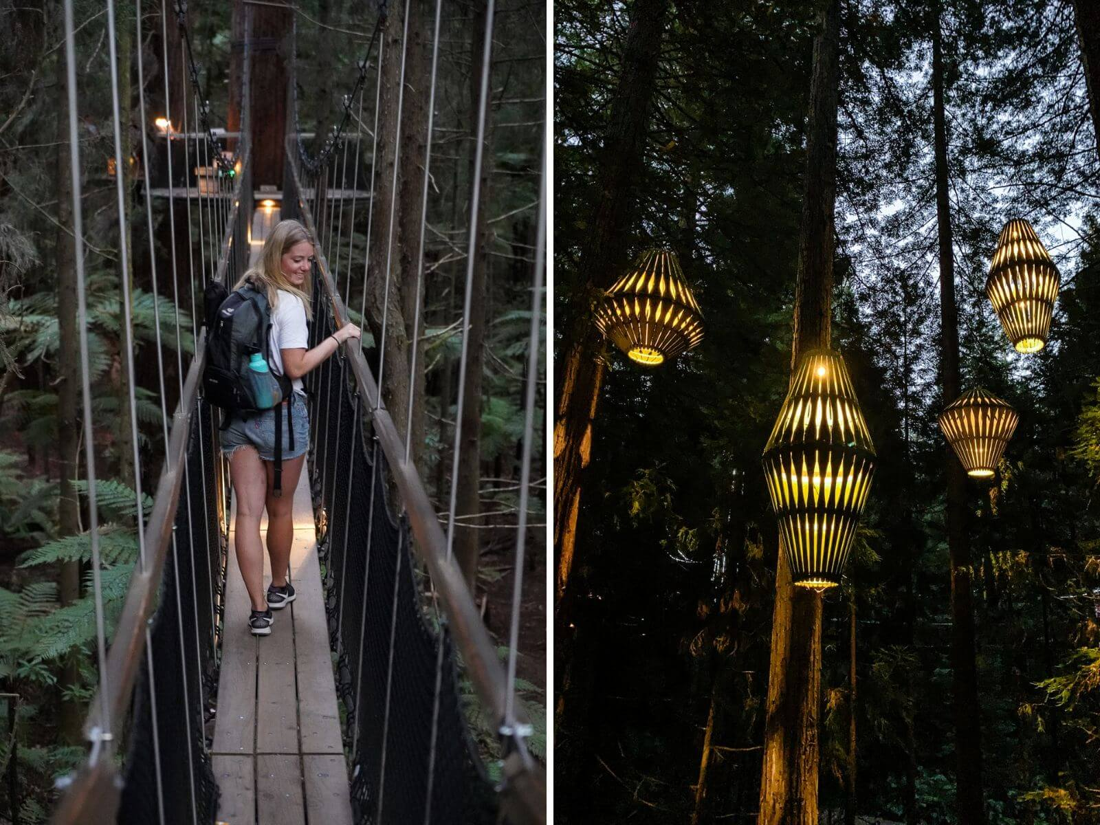 Redwoods Treewalk in de avond - by NOMADS