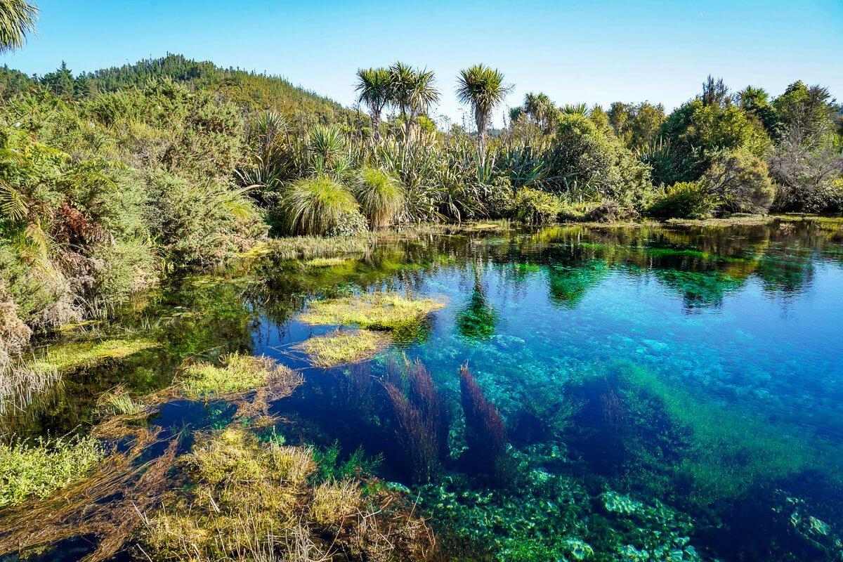 Te Waikoropupu Springs - Bezienswaardigheden Zuidereiland Nieuw-Zeeland