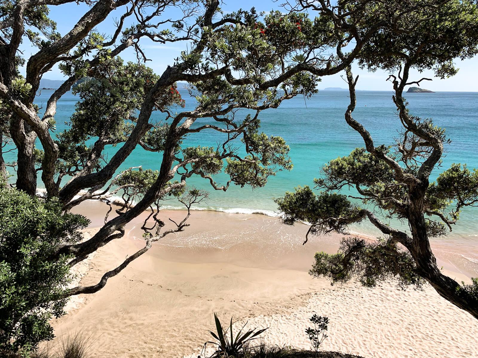 Mooiste stranden Nieuw-Zeeland - Hahei Beach